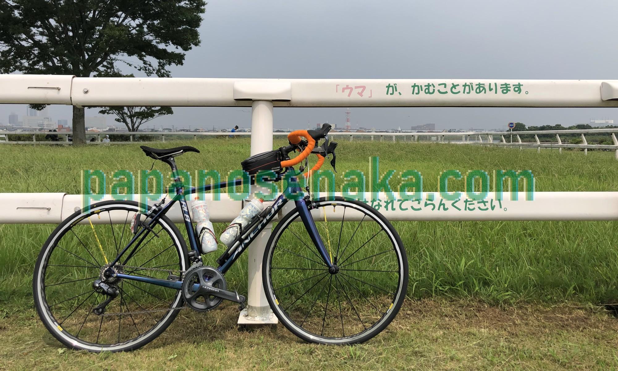 ぱぱの背中の自転車